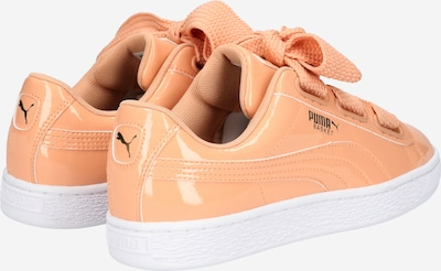 PUMA Sneaker 'Basket Heart' in koralle / weiß: Rückansicht