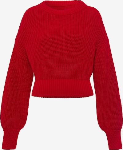 IVY & OAK Jumper 'Chunky Crew Neck' in rot, Produktansicht