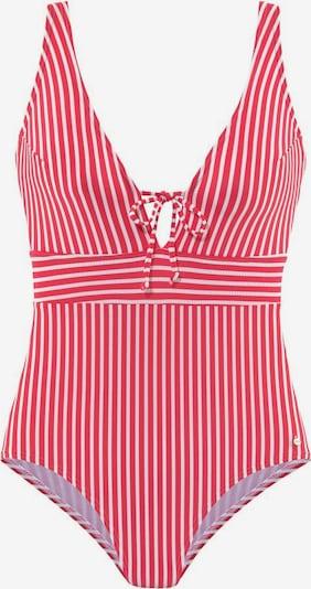 s.Oliver Badeanzug in rot / weiß, Produktansicht