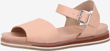 KICKERS Sandalen in Pink