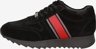 SIOUX Sneaker in hellrot / schwarz, Produktansicht