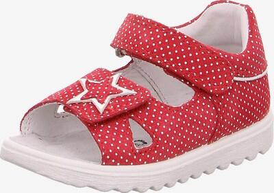SUPERFIT Schuhe 'Lettie' in rot / weiß, Produktansicht
