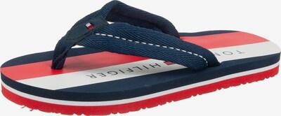 TOMMY HILFIGER Zehentrenner in blau / rot / weiß, Produktansicht