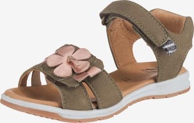 ZEBRA Sandale in grün / altrosa, Produktansicht