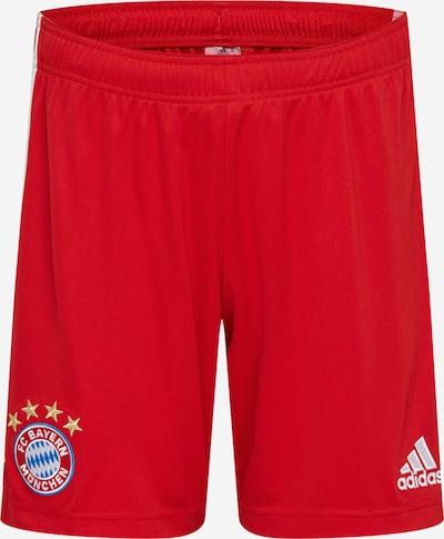 ADIDAS PERFORMANCE Športne hlače 'FC Bayern München' | rdeča / bela barva, Prikaz izdelka