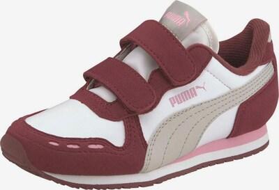PUMA Sneaker 'Cabana Racer SL V PS' in beige / rosa / bordeaux / weiß, Produktansicht
