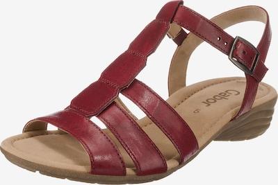 GABOR Sandaletten in rot, Produktansicht