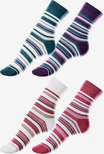 LAVANA Socken in petrol / aubergine / feuerrot / weiß, Produktansicht