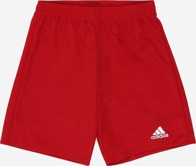 piros / fehér ADIDAS PERFORMANCE Sportnadrágok 'PARMA 16': Elölnézet