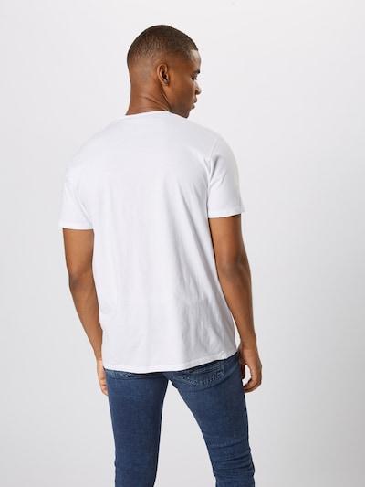 EDWIN Shirt 'The Wave' in blau / weiß: Rückansicht