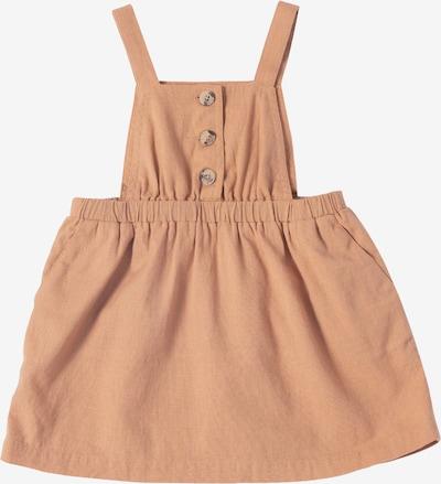 EDITED Obleka 'Velma' | rjava barva, Prikaz izdelka