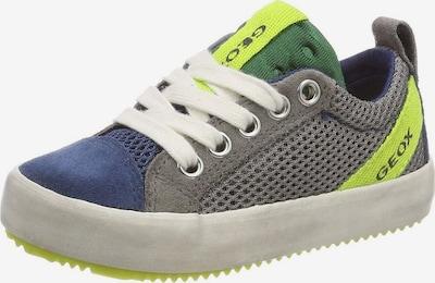 GEOX Lage schoen in de kleur Blauw / Geel / Grijs, Productweergave