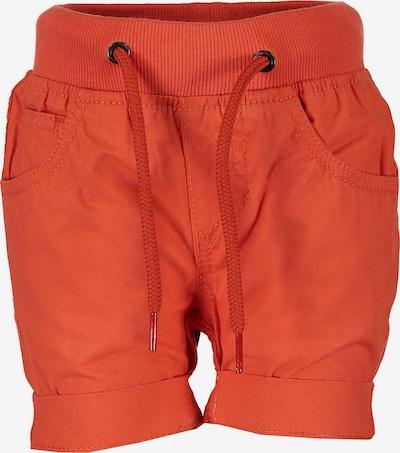 BLUE SEVEN Shorts in dunkelorange, Produktansicht