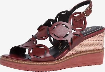 TAMARIS Sandale in bordeaux, Produktansicht
