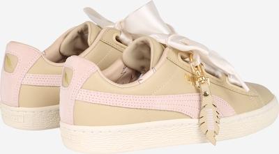 PUMA Sneaker 'Basket Heart Coach' in creme: Rückansicht
