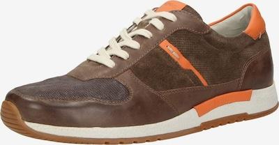 SIOUX Sneaker 'Rodon' in braun: Frontalansicht