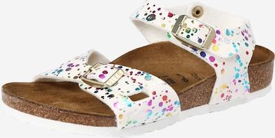 BIRKENSTOCK Sandale 'Rio' in weiß, Produktansicht