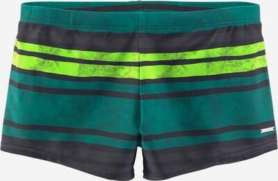 CHIEMSEE Boxer-Badehose in grau / grün, Produktansicht