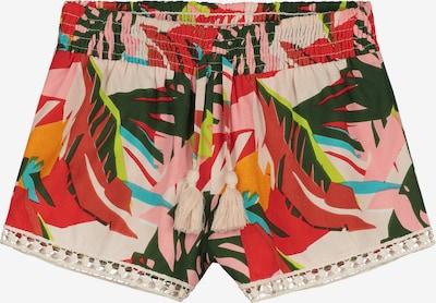 Shiwi Shorts 'Frangipani' in mischfarben, Produktansicht