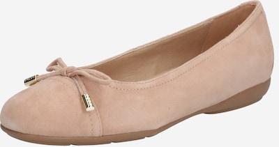 GEOX Ballerina 'ANNYTAH' in beige, Produktansicht