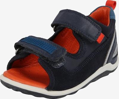 ECCO Sandale 'Biom Mini' in nachtblau / weiß, Produktansicht