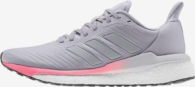 ADIDAS PERFORMANCE Laufschuh 'SOLAR DRIVE 19' in grau / pink, Produktansicht