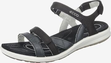 ECCO Sandale 'Cruise II' in Schwarz