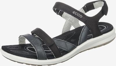 ECCO Sandalen 'Cruise II Black/Black Starship/Zinnia Y' in schwarz, Produktansicht
