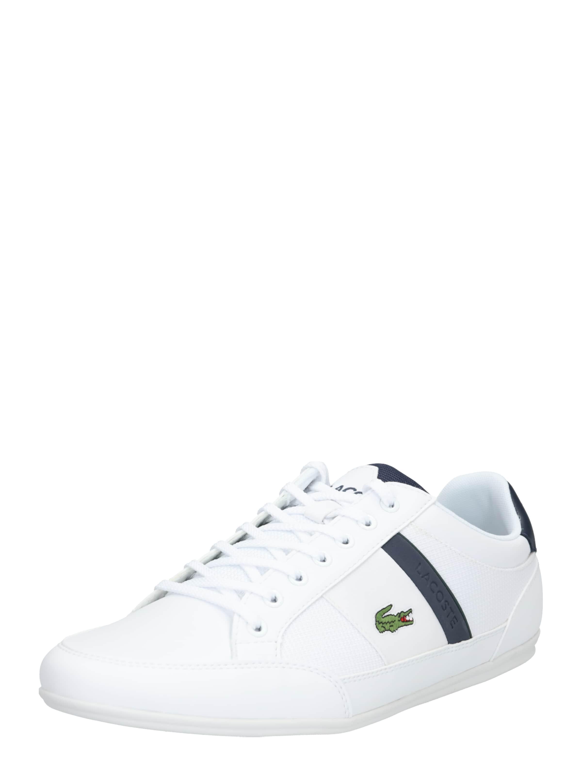 Lacoste In 'chaymon Sneaker Cma' 319 NavyRot 3 oBWrCdex