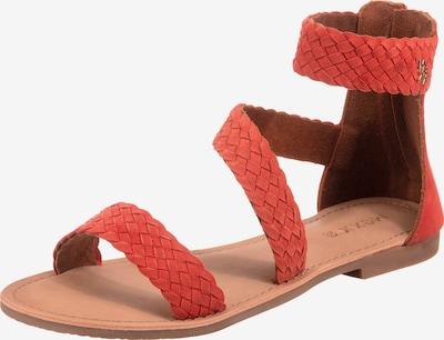 MEXX Sandalen in rot, Produktansicht