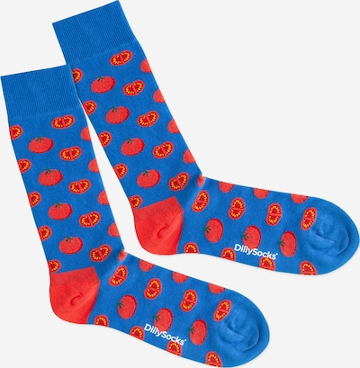 DillySocks Socken 'Lake Tomato' in blau / rot, Produktansicht