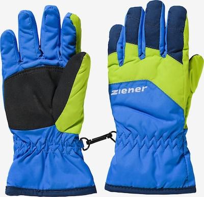 ZIENER Skihandschuhe 'Lejano AS' in blau / schilf / schwarz, Produktansicht