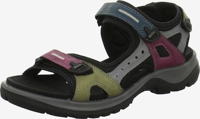 ECCO Sandalen/Sandaletten in mischfarben, Produktansicht