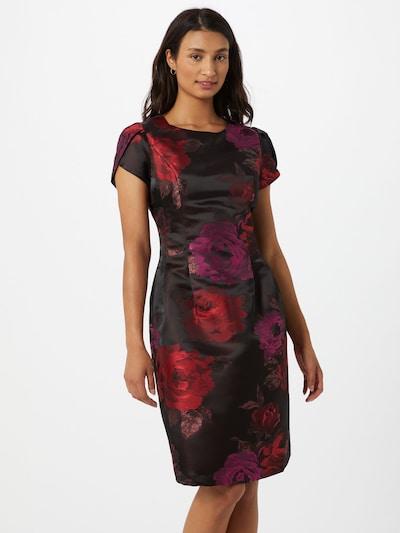 APART Kleid in mischfarben / bordeaux, Modelansicht