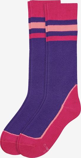 camano Socken in dunkellila / pink / rosa, Produktansicht