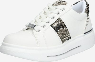 Carvela by Kurt Geiger Sneaker 'JUBILATE' in braun / weiß, Produktansicht