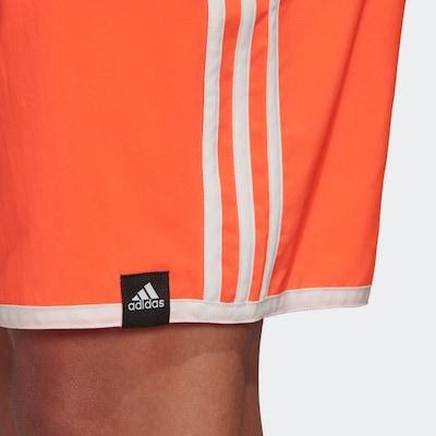 ADIDAS PERFORMANCE Badeshorts in orange / weiß, Produktansicht