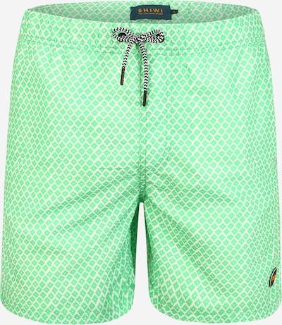 Shiwi Plavecké šortky - zelená: Pohľad spredu