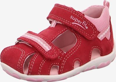 SUPERFIT Schuhe 'Fanni' in hellpink / rot / weiß, Produktansicht