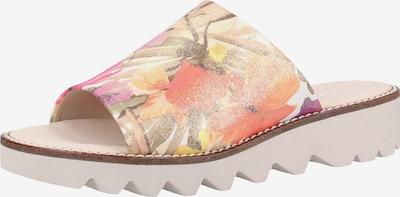 GABOR Pantoletten in mischfarben, Produktansicht