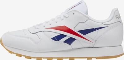 Reebok Classic Sneaker in marine / rot / weiß, Produktansicht