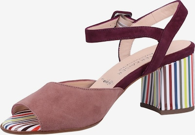 PETER KAISER Sandalen in mischfarben / weinrot / pastellrot, Produktansicht