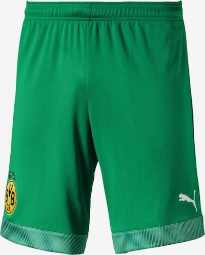 PUMA Sportbroek 'BVB' in de kleur Goudgeel / Groen / Wit: Vooraanzicht