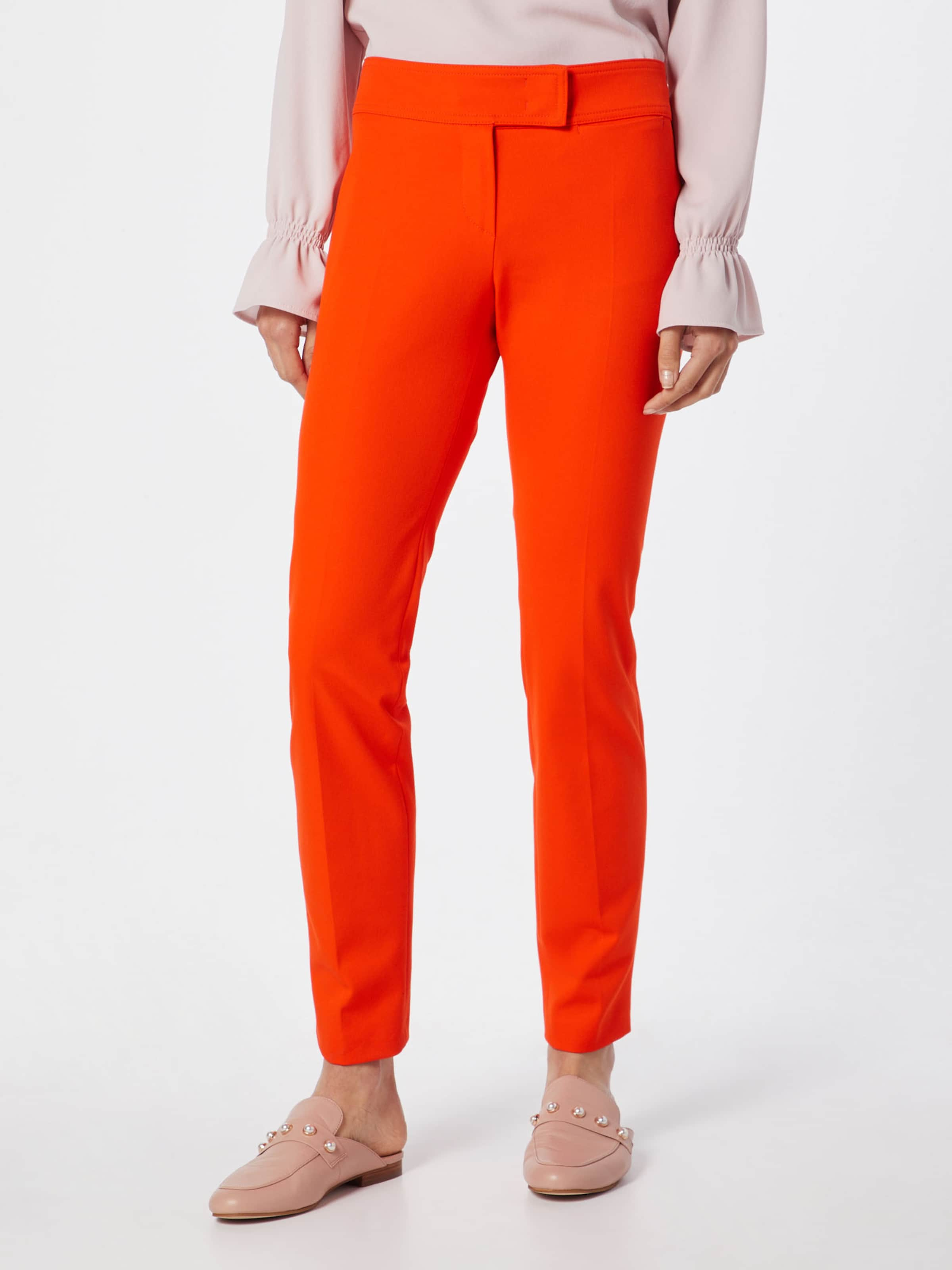En 'f012s' Pantalon Orange René Lezard n0wPXO8Nk