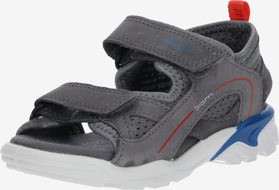 ECCO Sandale in dunkelgrau / rot, Produktansicht