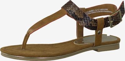 MARCO TOZZI Séparateur d'orteils en marron / brocart, Vue avec produit