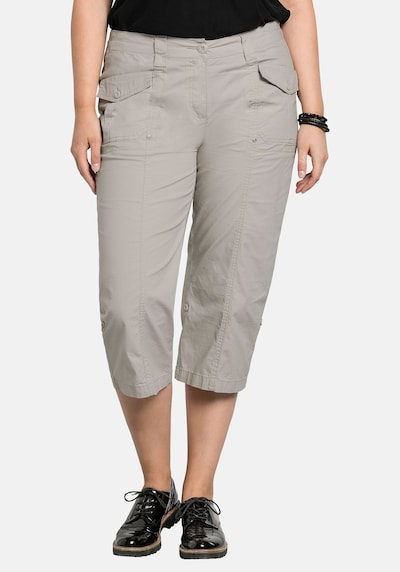 SHEEGO Trousers in Taupe: Frontal view