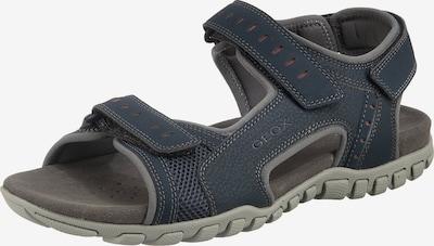 GEOX Sandale 'Mito' in navy, Produktansicht