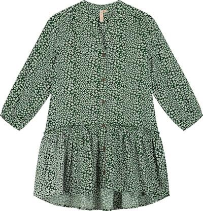 Shiwi Šaty - zelená, Produkt