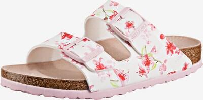 BIRKENSTOCK Pantoletten in hellgrün / pink / weiß, Produktansicht